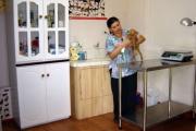 clinica-veterinaria-el-granero-consultorio