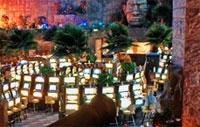 inside-casino-fiesta