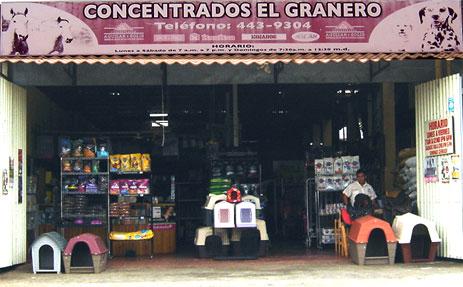 clinica-veterinaria-el-granero-montecillos-alajuela